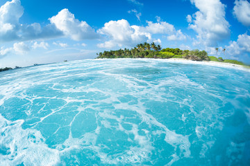 Wall Mural - Turquoise water of the Indian Ocean in Maldives with green island on the horizon