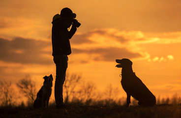 Owner take a photo from his dog in the nature