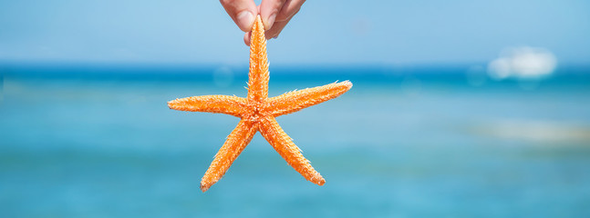 starfish on the beach in the hands of a man. Selective focus.