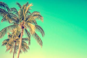 Photo sur Aluminium Palmier Palm tree on blue sky background with copy space, vintage style