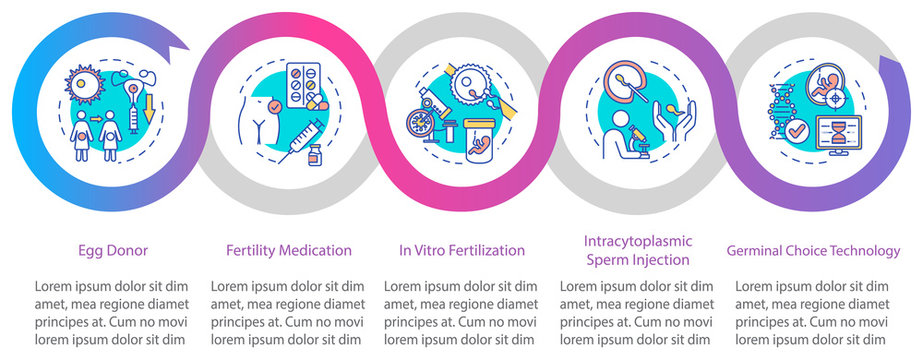 Reproductive technology vector infographic template. In vitro fertilization presentation design elements. Data visualization with 5 steps. Process timeline chart. Workflow layout with linear icons