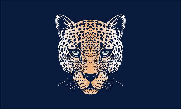 jaguar face on dark background