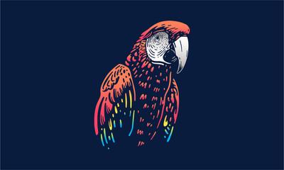 Ara vector illustration on dark background