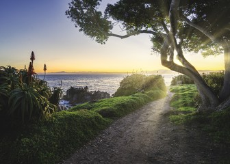 Keuken foto achterwand Ochtendgloren Beautiful shot of the central coast of California with the sunrise on the horizon and a pathway