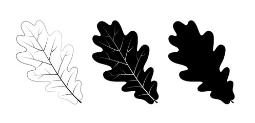 Vector set of oak leaves, outline and silhouette.