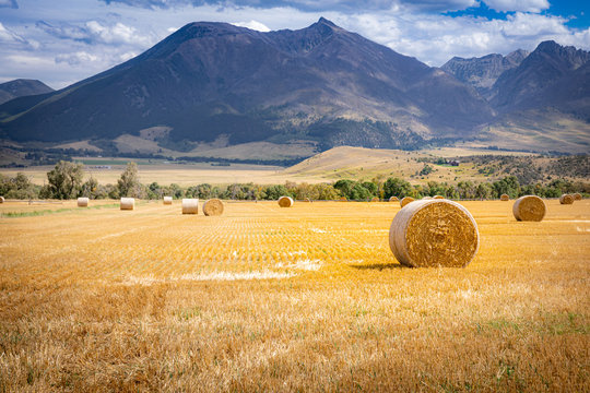 Hay bale on a field in Wyoming with mountains in the background