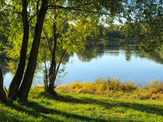 Fototapeta lake in the forest, sunny day in a beautiful autumn forest on the shore of a lake and river, a resting place in a birch forest, autumn rest on a quiet forest lake, relax and unwind,
