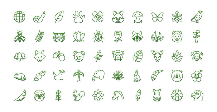 Biodiversity and animals gradient style icon set vector design