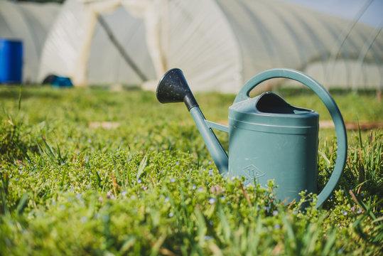 Arrosoir dans l'herbe devant une serre