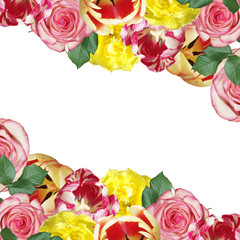 Fototapete - Beautiful floral background of roses and tulips. Isolated