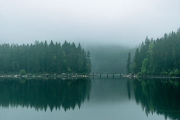 Moody forest reflections at lake Eibsee during blue hour