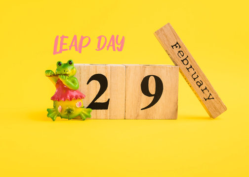 Leap Day concept. February 29 on calendar and frog