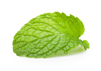 Mint leaves on white background. Clipping path.