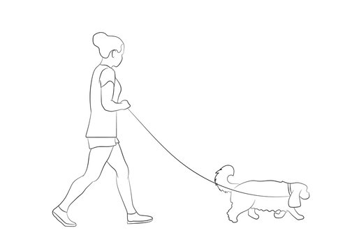 Young woman walking with pet dog. Dog walker. Friendship. Dog walking concept. Vector illustration. Outline silhouette.