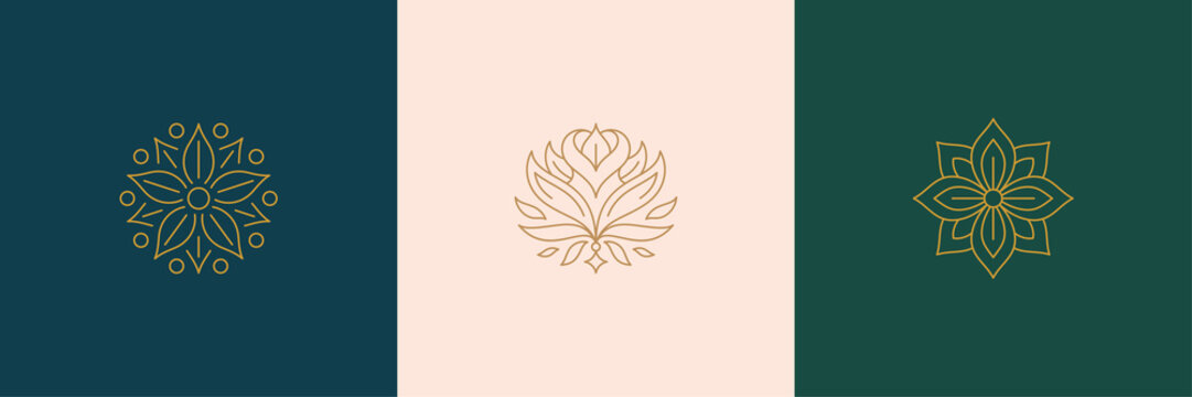 Vector line minimal decoration design elements set - rose flower and botanical leaves illustrations minimal linear style