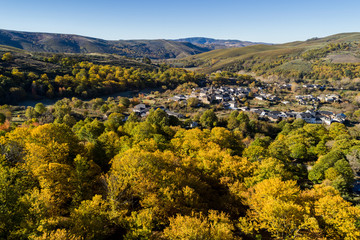 Canvas Prints Honey aerial landscape in autumn