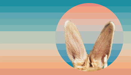 Beautiful abstract surreal Rabbit ears Geometric collage concept, contemporary colors and mood social background.