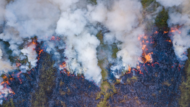 Aerial view   Fire in the forest burning trees and grass Natural fires