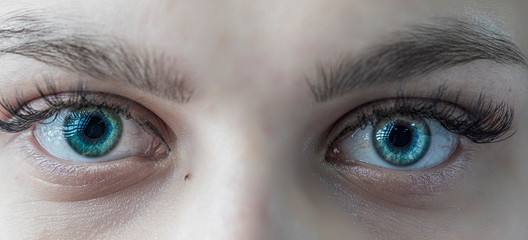 Fotorollo Iris Girl green eyes photographed closeup.