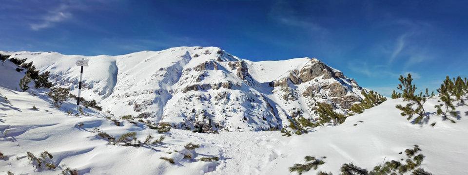 Panoramic view of Mount Bucegi on winter