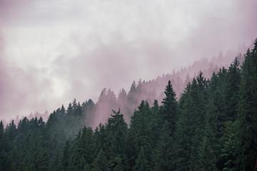 Misty mountain landscape Wall mural