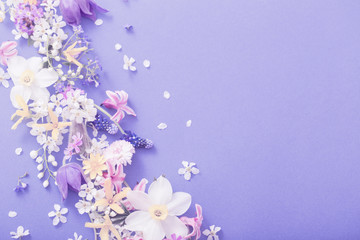 spring flowers on paper background Wall mural