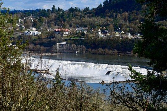 Willamette Falls 5