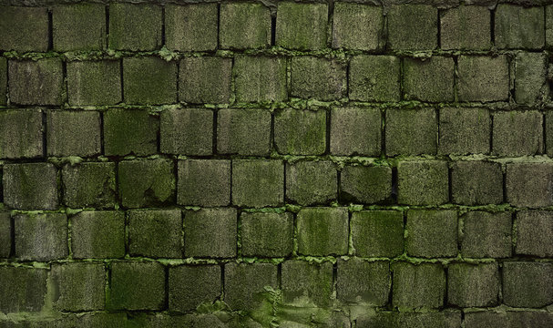 old brick wall with moss and lichen