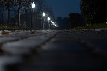 Fotomurales - Night alley in park illuminated with street lamps.Grunge background. Cold season. Evening illuminated park.