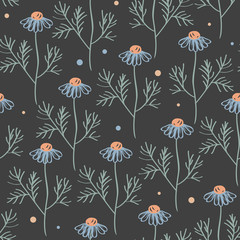 Wall Mural - Vector seamless pattern with chamomile branches isolated on grey. Hand drawn botanical texture with meadow flowers.