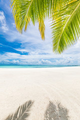 Wall Murals Palm tree Summer vacation and holiday background, palm leaf with sea view. Idyllic luxury travel destination and beach nature banner