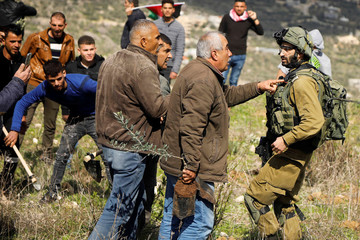 Palestinian demonstrators argue with an Israeli soldier as they try to plant olive trees in the Israeli-occupied West Bank