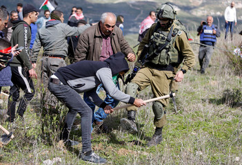 An Israeli soldier prevents a Palestinian from planting olive trees during a protest in the Israeli-occupied West Bank