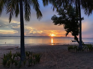 Very beautiful sunset at the tropical beach. Panoramic view of orange sun between palms. Amazing...