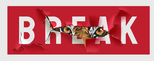 A tiger breaks a wall, a predator's gaze through a crack or cut. Wild hunt with tiger and claw mark illustration. Trigger walking in the shadow illustration Fotobehang