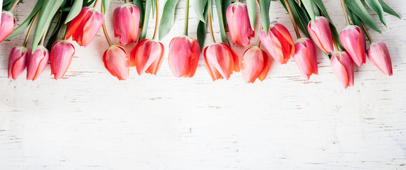 Zelfklevend Fotobehang Tulp Pink tulips bouquet border on white wooden background from above. Top view of red flower bud frame. Spring seasonal holiday and easter greeting card design layout.