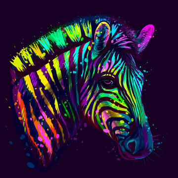 Zebra.  Abstract, neon, multicolored portrait of zebra head on a dark blue background with bright splashes of paint.