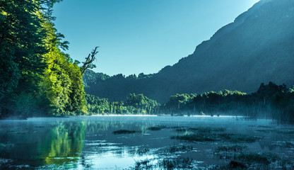 Foto op Plexiglas Groen blauw morning view of the lake