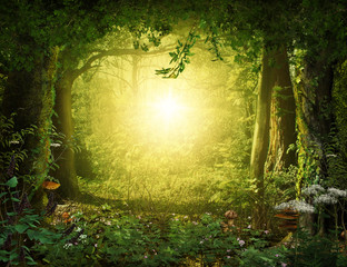 Beautiful enchanting fairy tale lush woodland, 3d render.