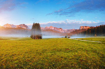 壁紙(ウォールミューラル) - Misty summer day in the Durmitor National park. Location place village Zabljak, Montenegro.