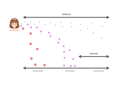 airborne infection, droplets size / spreads diseases vector / long and short