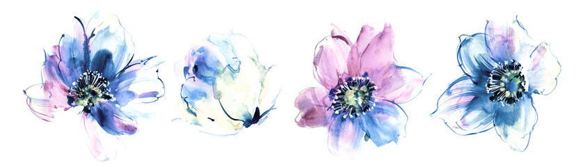 Flowers watercolor illustration.Manual composition.Big Set watercolor elements. Wall mural