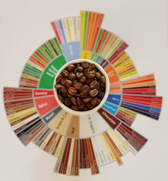 Specialty coffee concept. Roasted coffee beans in white cup on taster's flavor wheel. Top view