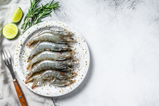 Fresh raw giant langoustine shrimp on a white plate. Gray background. Top view. Copy space