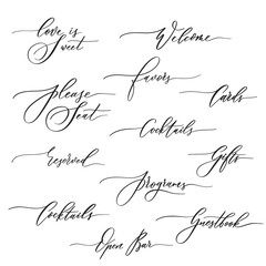 Wedding calligraphic inscriptions -  welcome,open bar, please seat, reserved, gifts, cards, programs.