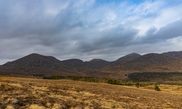Mourne mountains and Annalong wood, Carrick little, County Down, Northern Ireland