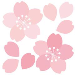 桜アイコン02