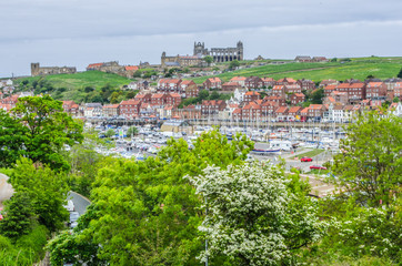 Whitby, North Yorkshire, England. June 10 2013. View across harbour towards the Abbey