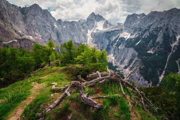 Wall Mural - Spring mountain landscape with hiking trail in Julian Alps, Slovenia
