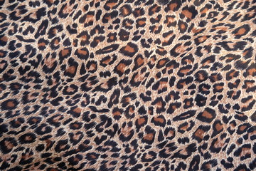 Photo on textile frame Leopard leopard skin texture